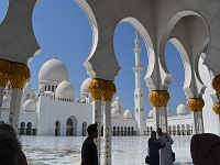 How do international schools work in United Arab Emirates?